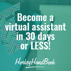 30 Days to Virtual Assistant Success