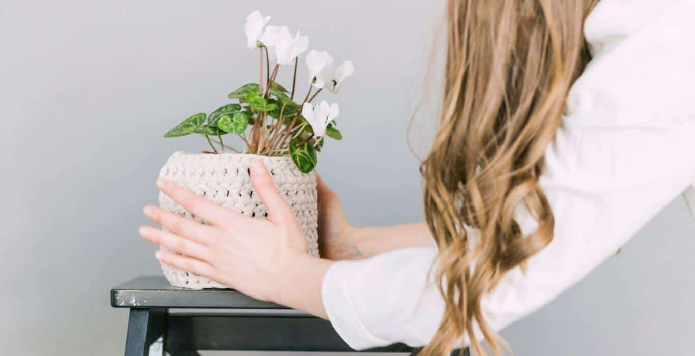 woman setting a plant on an end table